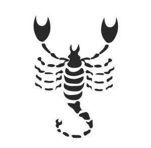Scorpio Man – Virgo Woman